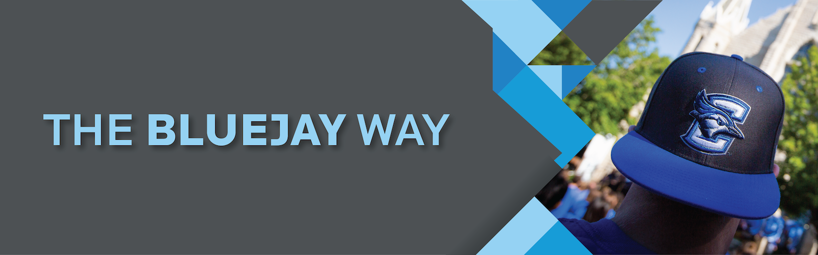 Bluejay Way Title Graphic